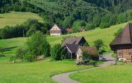 Schwarzwaldlandschaft im Frühling